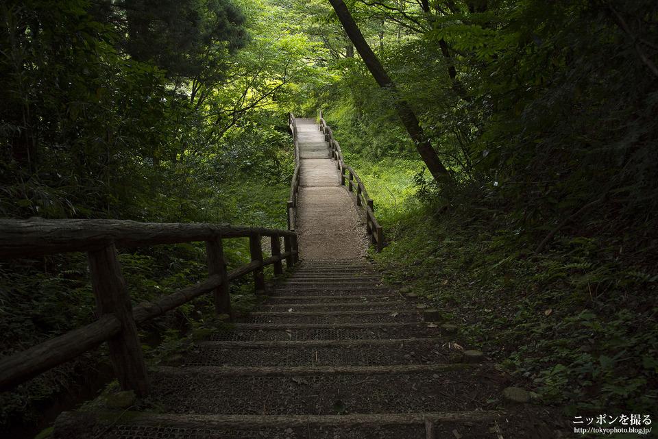 山中城跡と箱根旧街道_0062