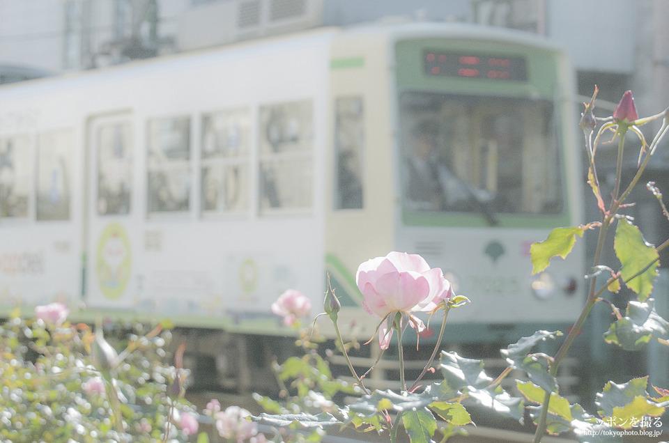 都電04_荒川二丁目_1