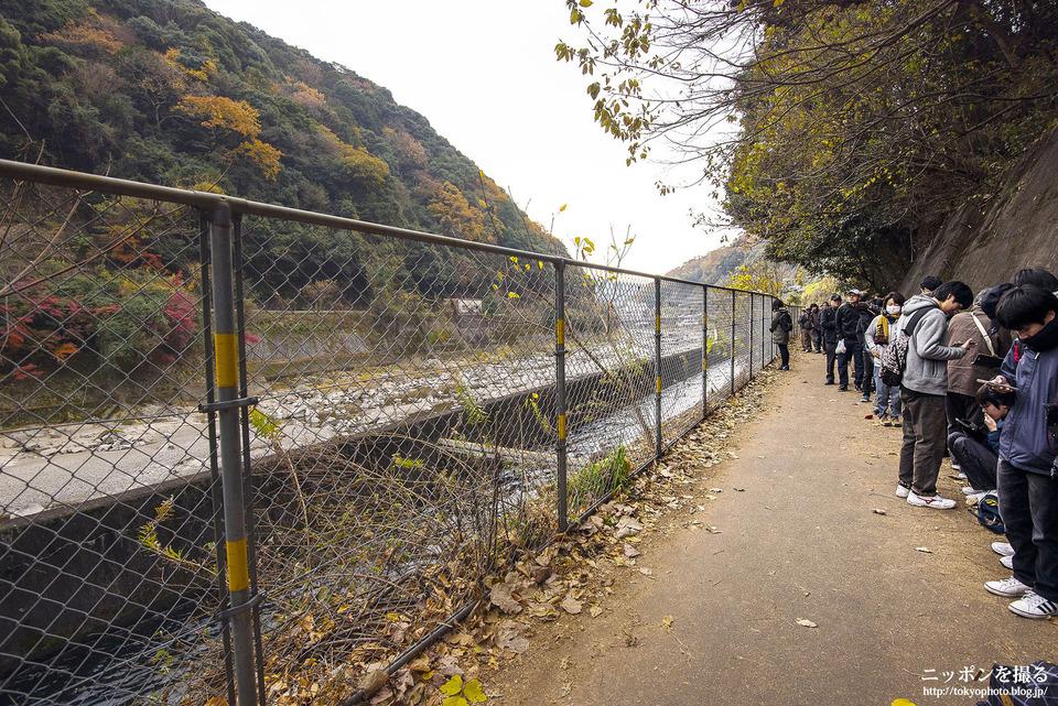 愛知県_春日井市_愛岐トンネル群_181201_0029