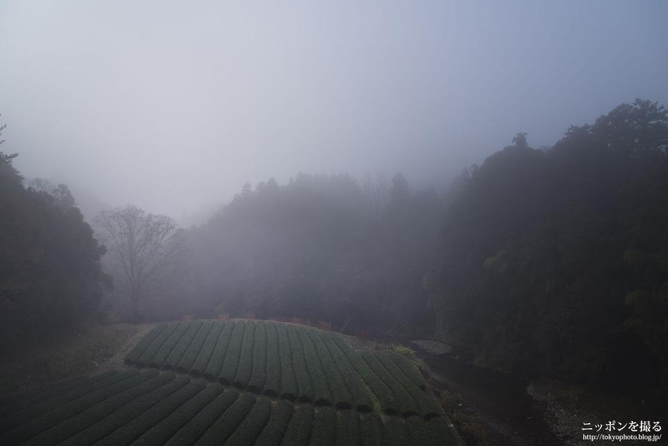 三重県_度会町_注連指川_0306