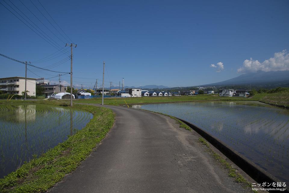 新幹線と富士山_0179
