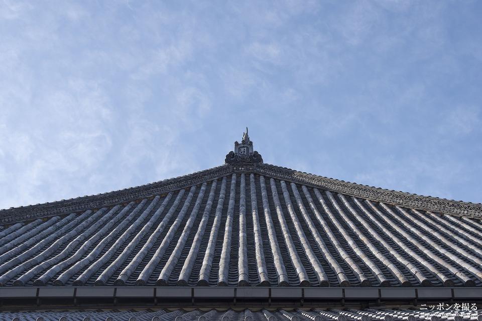 名古屋の撮影スポット_八事山興正寺_0002