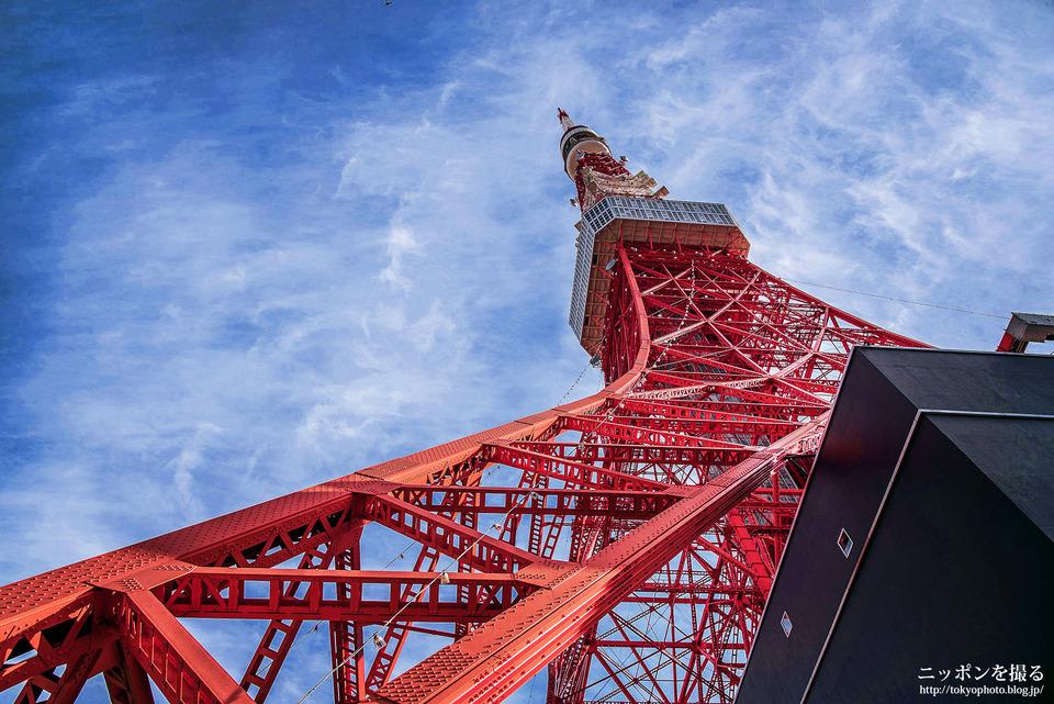 東京タワー_0000