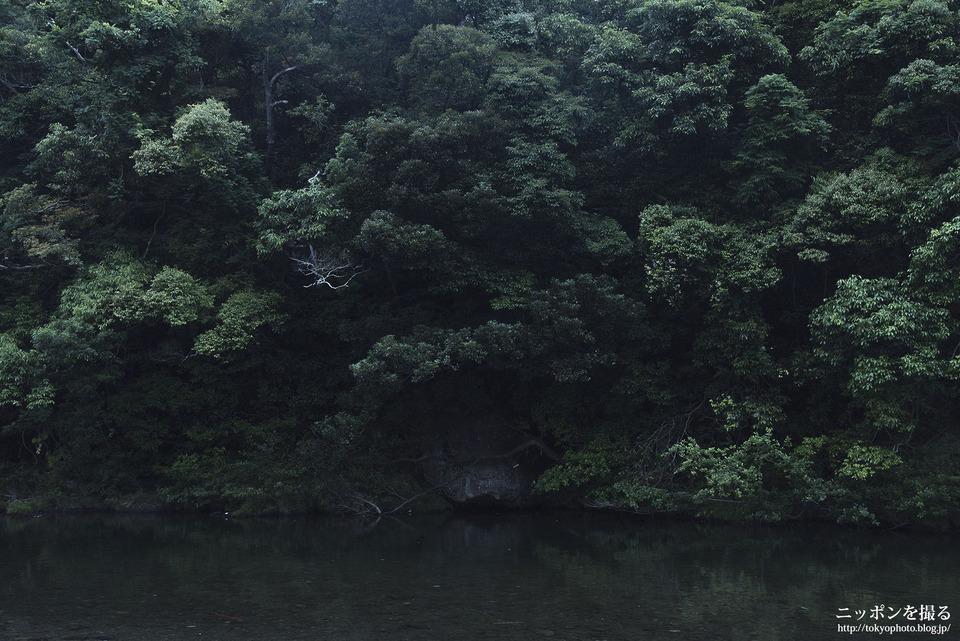 伊勢神宮_160607UP_0010