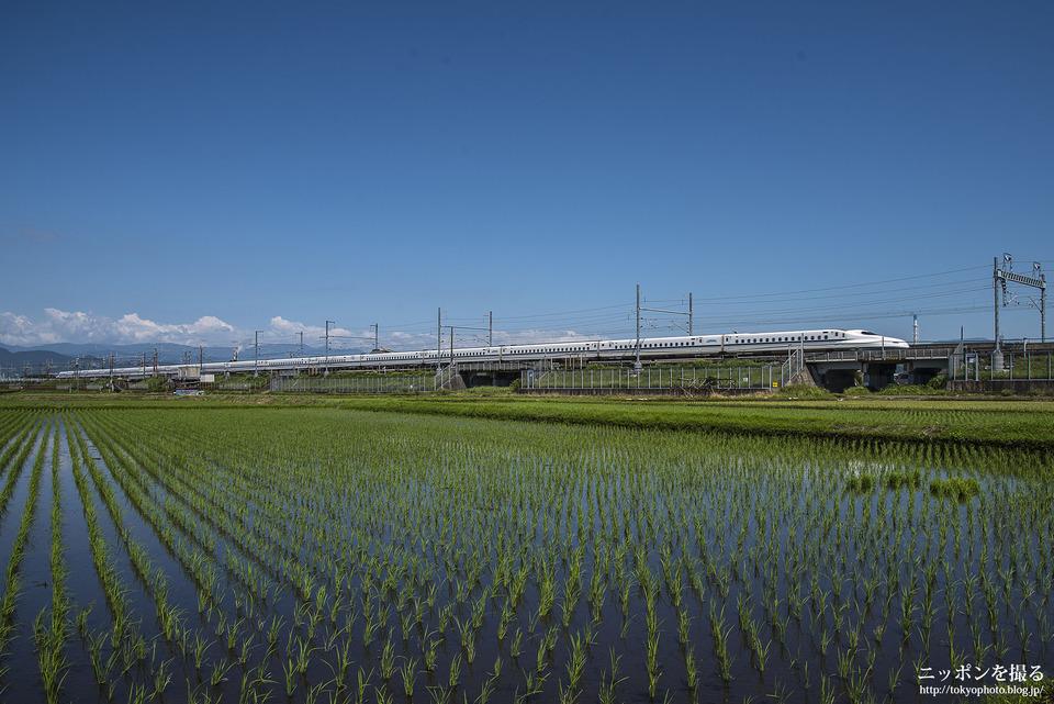 新幹線と富士山_0173