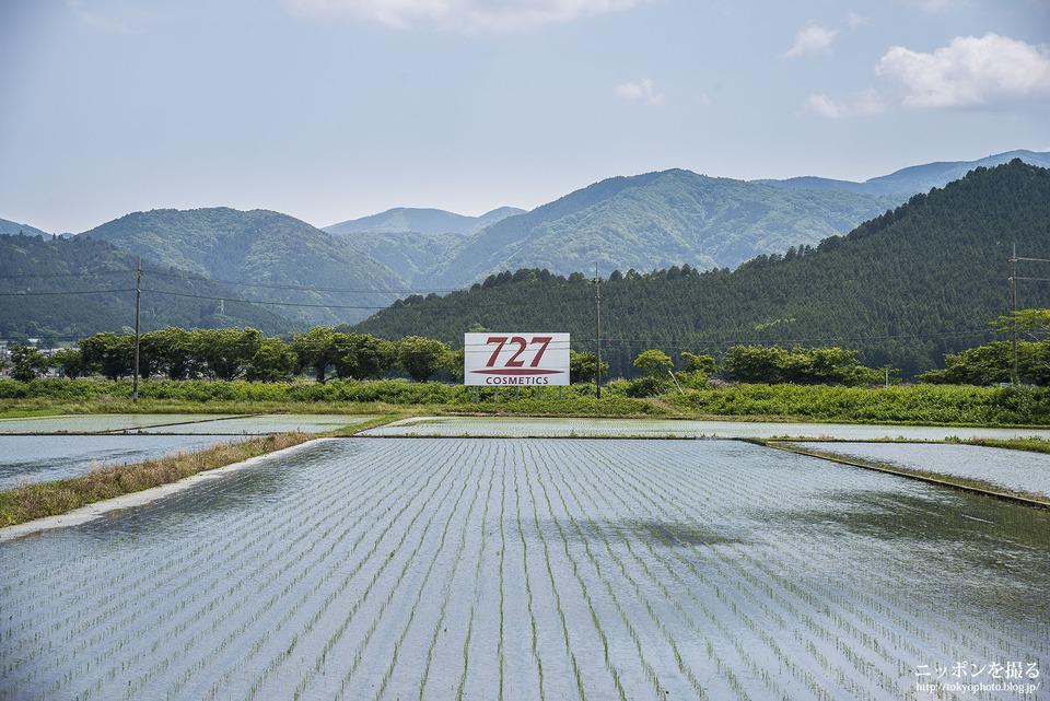 伊吹山と新幹線_0109