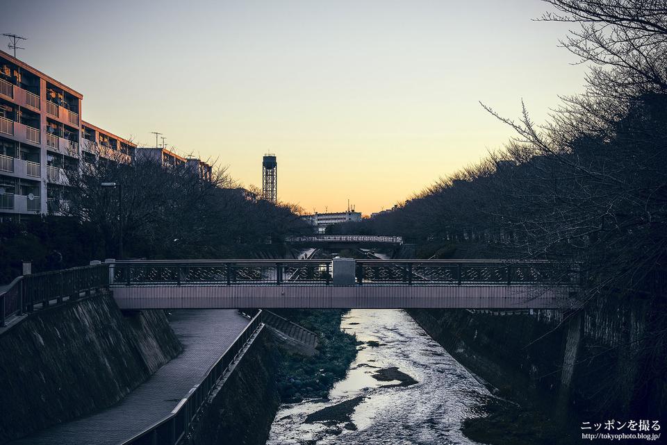 48_東京_練馬区_石神井公園