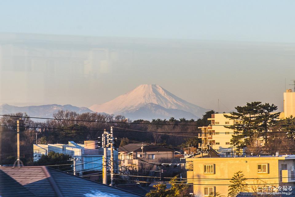 石神井公園110fuji