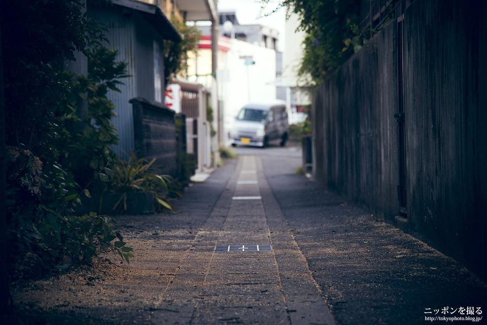 弥富_0229