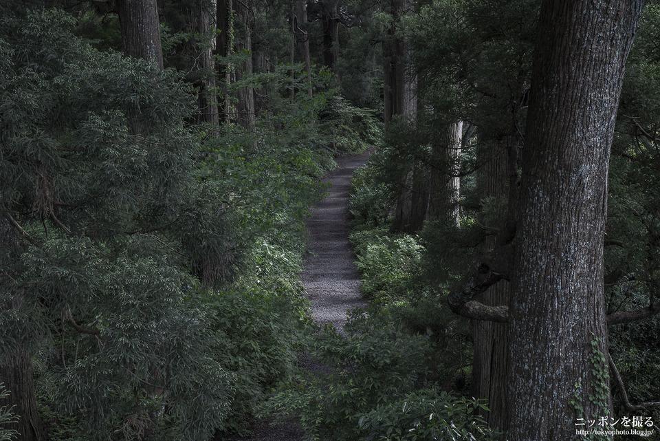 芦ノ湖_0154