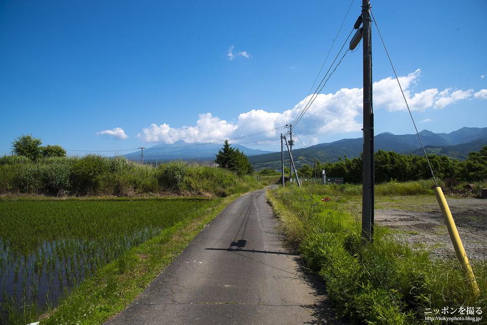 新幹線と富士山_0177
