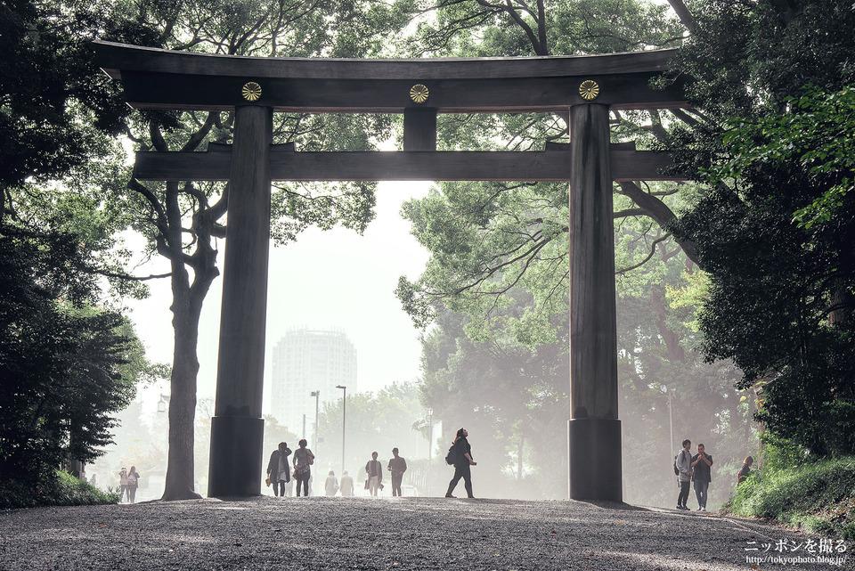 18_東京_渋谷区_明治神宮