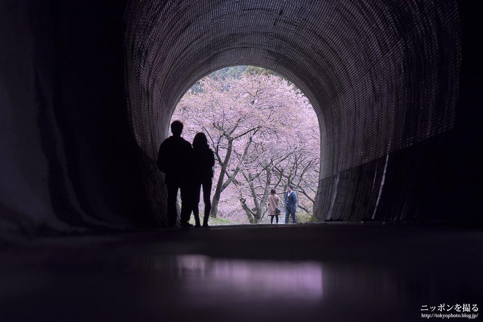 愛知県_新城市_本長篠_0040