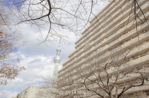 Tokyoskytree1221-0939