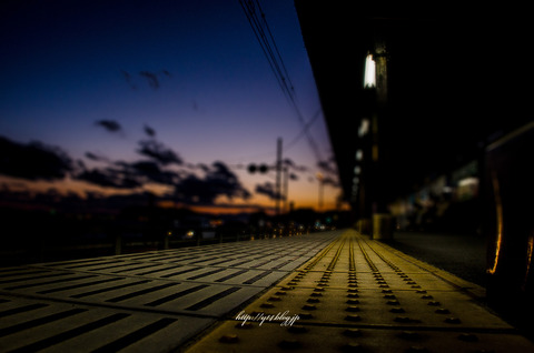 enoshima-9256