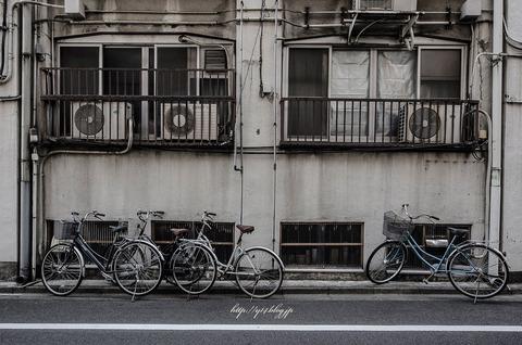 Tsukiji0511-4355