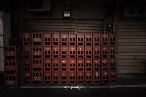 Tsukiji0511-4281