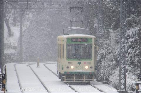 Tam-waseda-5452