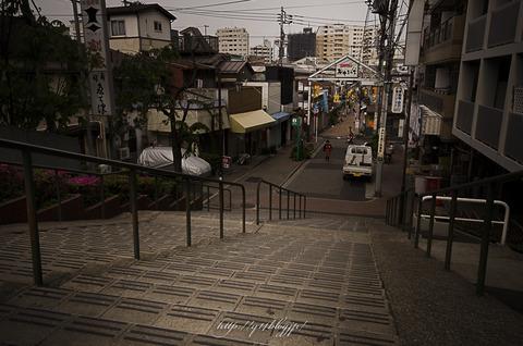2015_Yanaka0514-4674