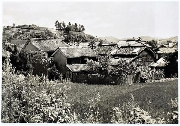 ((1962郷の谷