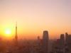 041116sunset 東京タワーと夕陽