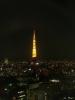 041116lightsout 東京タワー上だけ