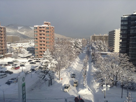 170125 雪の朝