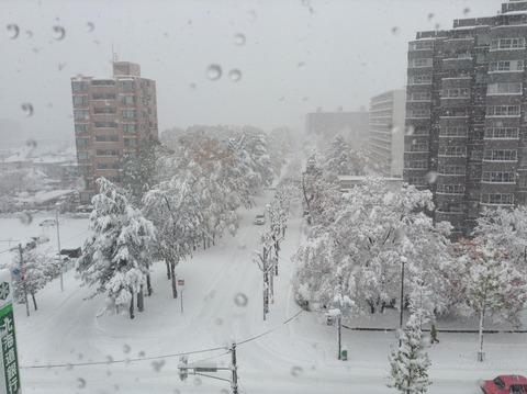 161106 大雪1