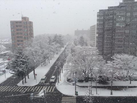 161202雪景色6階から1