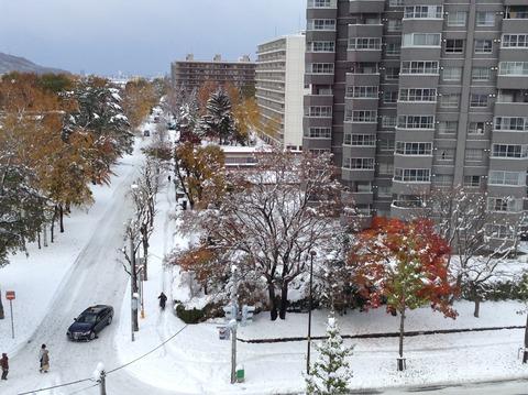 161106 大雪午後