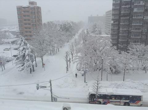 161223 大雪6階から
