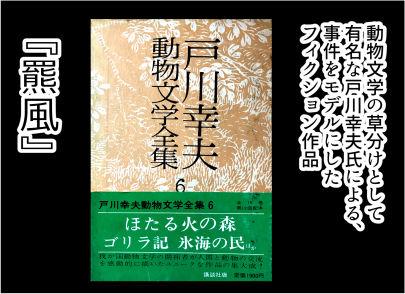 三毛別羆事件 2-5
