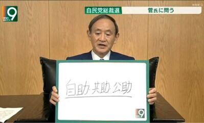 菅首相自助共助公助