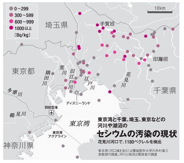 関東セシウム汚染の現状