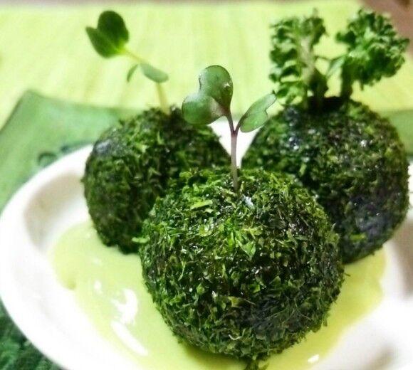 青のりにあんこ?青のりに高菜チーズ?食べてびっくり見てびっくり、うまくてびっくりの苔玉もちの作り方【ネトメシ】