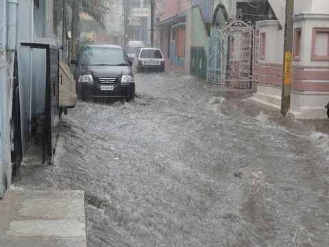 【仰天】洪水でとんでもないものが流れてきてしまうwwwww(※衝撃動画あり)