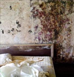 秘密の部屋-隠れ家-謎-10