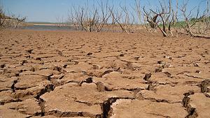 drought-cnn[1]
