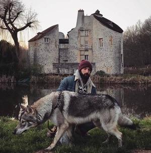 wolfdog_10-min
