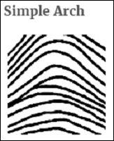 fingerprint_05