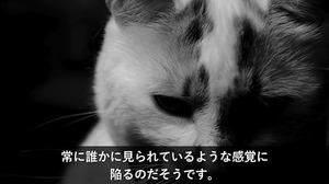 1 (10)-min