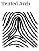 fingerprint_06