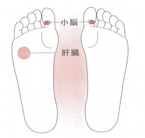 netsuki
