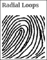 fingerprint_03