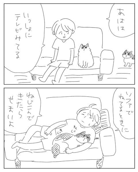 IMG_2146-min