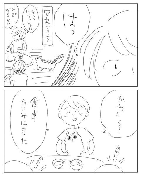 IMG_2145-min