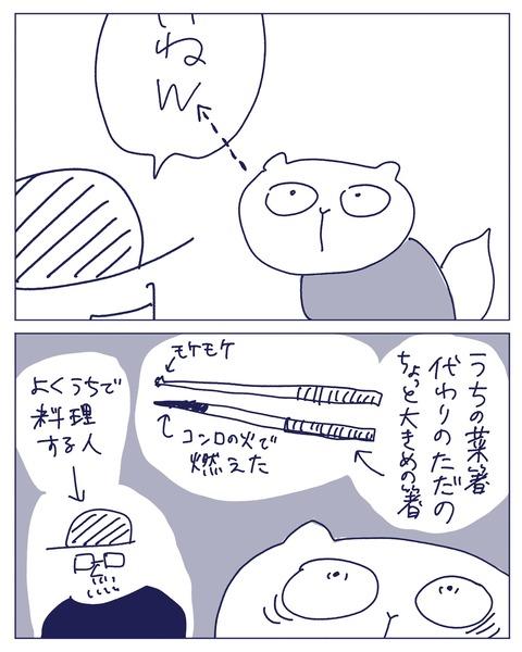 IMG_1811