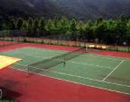 テニス・野球・サッカー