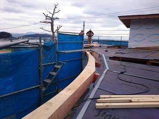 海の家 曲面 屋根