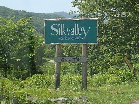 silkvalley16601